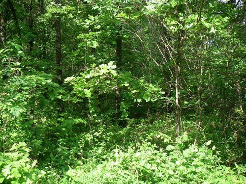 90 Lots Timber Lake Subdivision : Osceola : Saint Clair County : Missouri
