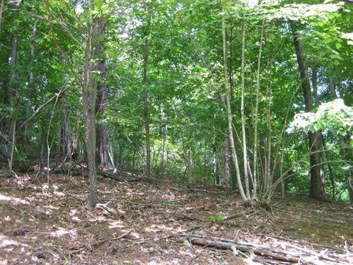 Building Lot Near Claytor Lake : Radford : Pulaski County : Virginia