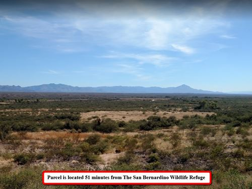Tranquil 0.25 Acre Lot In Az : Douglas : Cochise County : Arizona