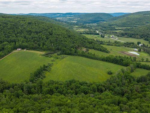 Hunting Preserve, Hundreds Of Acres : Hornell : Steuben County : New York