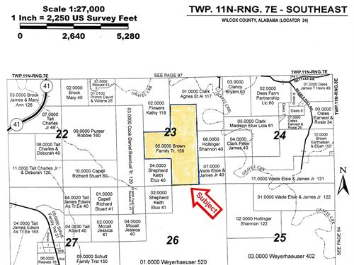 66-092 Sedan Tract : Camden : Wilcox County : Alabama
