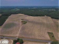 Falling Creek Farm : Kinston : Lenoir County : North Carolina