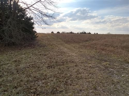 31 Acres, Hunting Property Build : Fair Play : Cedar County : Missouri