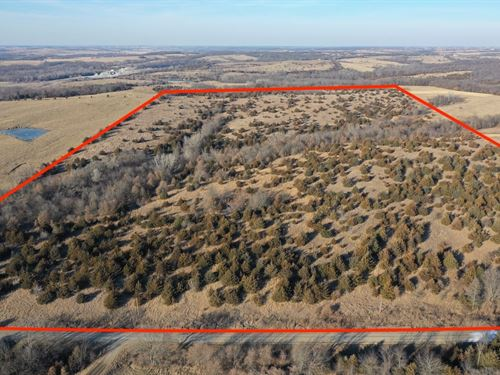 Hunting Property Decatur County : Decatur City : Decatur County : Iowa