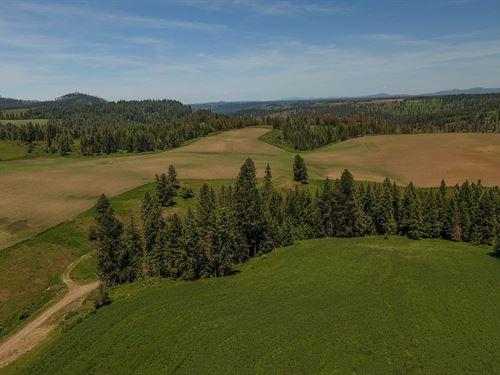 Farm Ranch / Hunting Land Kamiah : Kamiah : Idaho County : Idaho