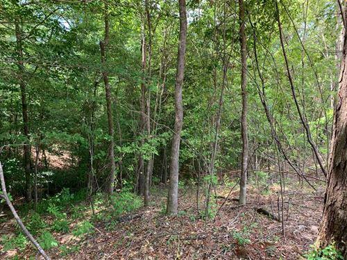 Madden Creek Tract, Lincoln Parish : Simsboro : Lincoln Parish : Louisiana