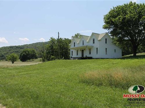 Outdoors, Men's Paradise, 186 Acres : Albany : Clinton County : Kentucky