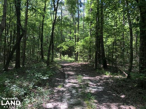 Timber And Recreational Paradise : Duck Hill : Montgomery County : Mississippi