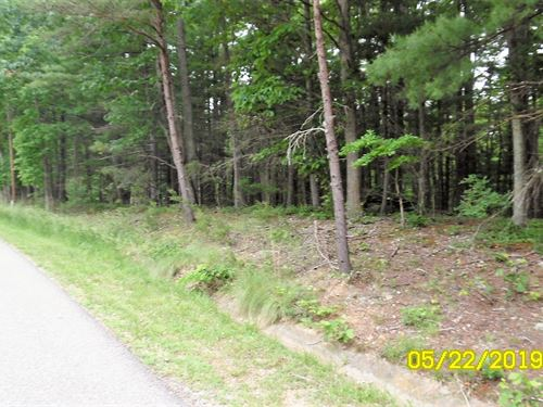 Building Lot in Max Meadows, VA : Max Meadows : Wythe County : Virginia