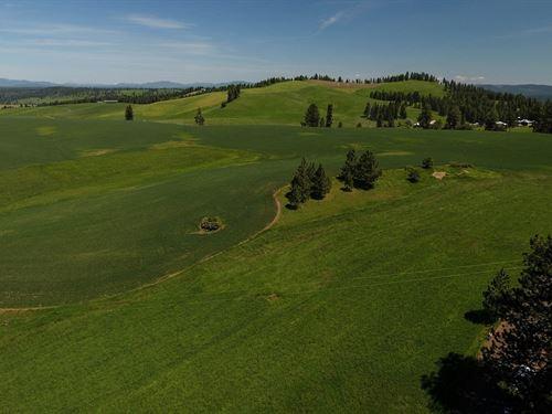 Developable Farm & Ranch Land : Kamiah : Idaho County : Idaho