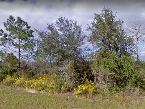 Washington County, Fl $25,000 Neg : Chipley : Washington County : Florida