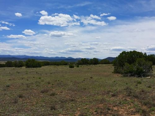 Escape The Heat- Bring Rv -1.06 Ac : Concho : Apache County : Arizona