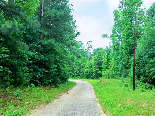 Wooded Homesite With Utilities : Cleveland : Liberty County : Texas