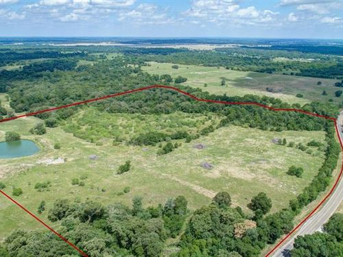 50 +/- Acre Cattle Land : Midway : Madison County : Texas