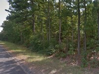 Excellent Investment : Holly Lake Ranch : Wood County : Texas