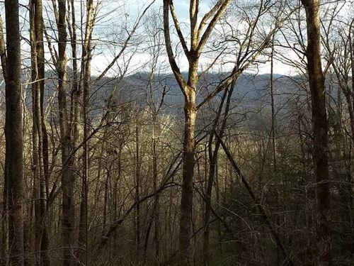 Beautiful, Large, Rural, Land Trac : Otto : Macon County : North Carolina
