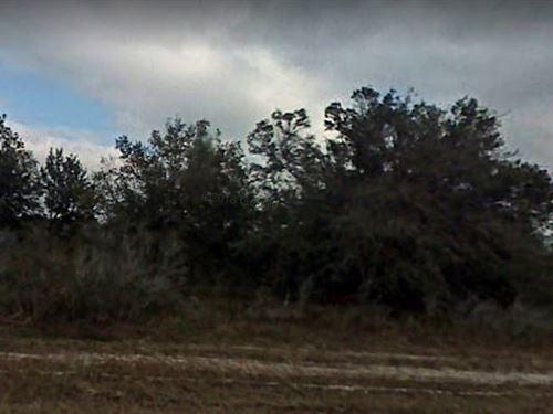 Okeechobee County, Fl $26,000 : Okeechobee : Florida