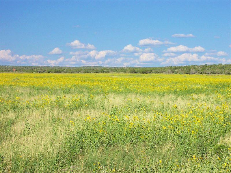 73 Acre Northern Az Ranch $258 Mo : Saint Johns : Apache County : Arizona