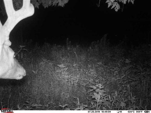 32 Acres / Hunting / Recreatio : Knox : Starke County : Indiana