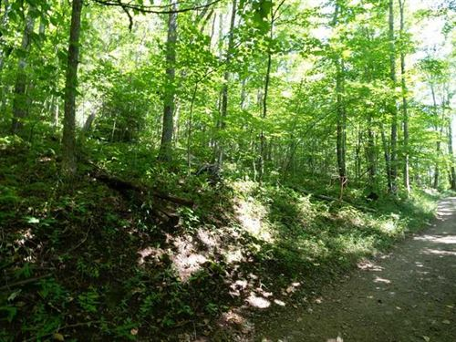 Beautiful Lot, Perfect For Buildin : Cullowhee : Jackson County : North Carolina