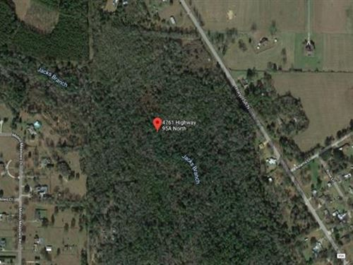 Land, Approx 55.46Ac Lot, Thi : Molino : Escambia County : Florida