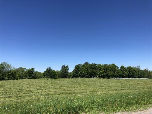 West Leyden Meadows : West Leyen : Lewis County : New York