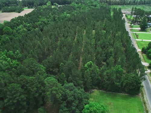 Simpson Creek 39 & 99 Tract : Loris : Horry County : South Carolina