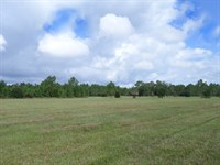 Alicia Acres 148 Acres In Ft, McCoy : Ft McCoy : Marion County : Florida
