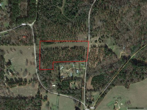 11 Ac Close To Lake Jacksonville : Jacksonville : Cherokee County : Texas