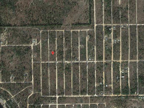 20 Lots For Sale In Interlachen, Fl : Interlachen : Putnam County : Florida