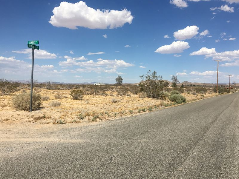 Spectacular Property, Awesome Views : Helendale : San Bernardino County : California