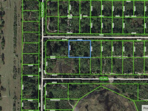 .46 Acres For Sale In Sebring, Fl : Sebring : Highlands County : Florida