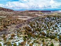 Acreage Bordering National Forest : Del Norte : Rio Grande County : Colorado