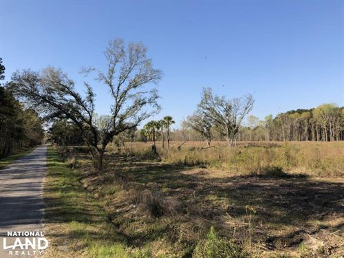 Dale 10 Ac Open Land Rural Resident : Seabrook : Beaufort County : South Carolina