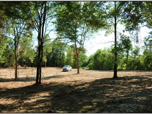 59.84 Acres In Yazoo County In Yazo : Yazoo City : Yazoo County : Mississippi