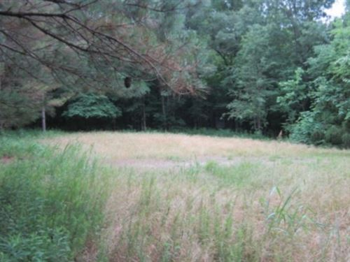 52 Acres In Pontotoc County In Pont : Pontotoc : Mississippi