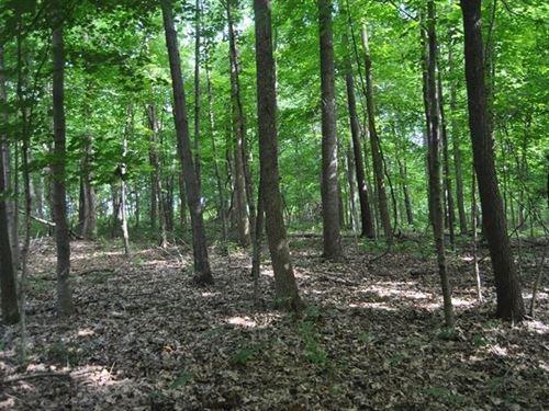 22 Acres Hunting Ground, Marshall : Marshall : Crawford County : Illinois