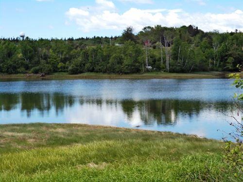 Buck's Harbor Land Lot Machiasport : Machiasport : Washington County : Maine