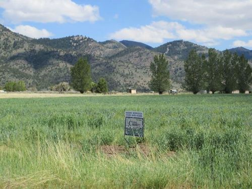 Corner Lot, New Pine Creek, $195/Mo : New Pine Creek : Modoc County : California