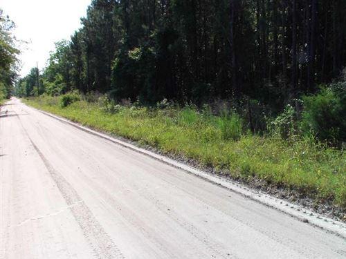 Mobile Home Lot In Waldo, Florida : Waldo : Alachua County : Florida