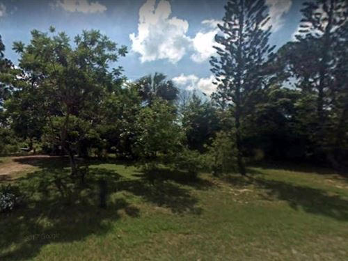 .5 Acres For Sale In Lehigh Acres : Lehigh Acres : Lee County : Florida