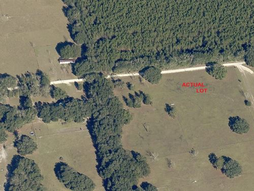 1.04 Acres For Sale In Lake City : Lake City : Columbia County : Florida