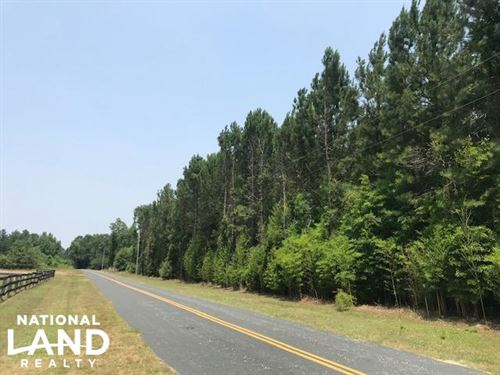 Chesney Tract : New Zion : Clarendon County : South Carolina