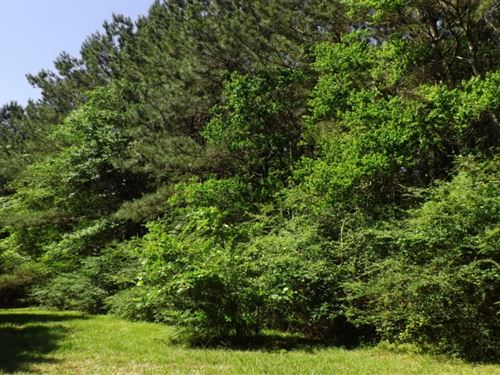 11 Acres In Marion County In Columb : Columbia : Marion County : Mississippi