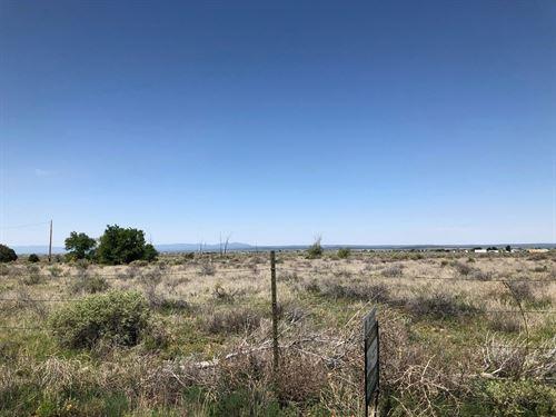 New Mexico 35 Acres Estancia Valley : Moriarty : Torrance County : New Mexico