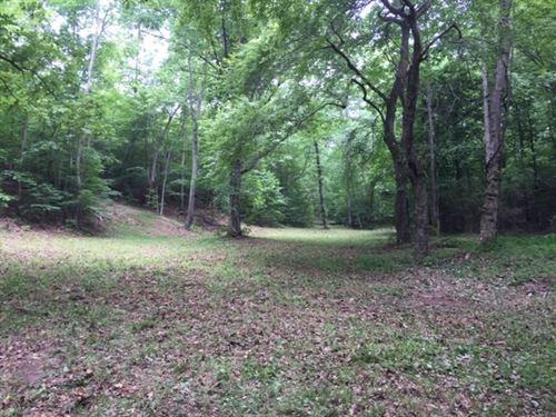 Wayne County Waynesboro TN Land 2 : Waynesboro : Wayne County : Tennessee
