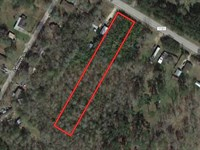 Unrestricted 1.35 Acres : Pine Forest : Orange County : Texas
