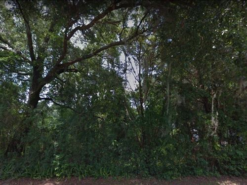 .32 Acres For Sale In Lake City, F : Lake City : Columbia County : Florida