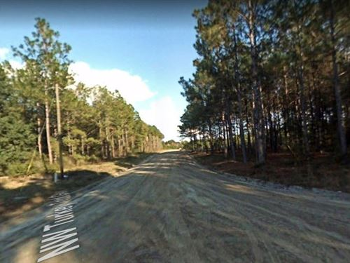 .4 Acres For Sale In Lake City, Fl : Lake City : Columbia County : Florida