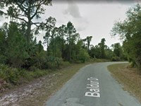 .81 Acres For Sale In Port Charlot : Port Charlotte : Charlotte County : Florida